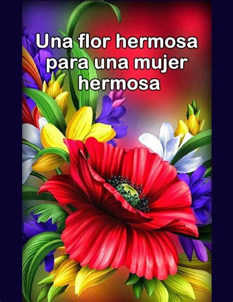 Fotos de flores bonitas   Telenovela | Fotos de flores ...