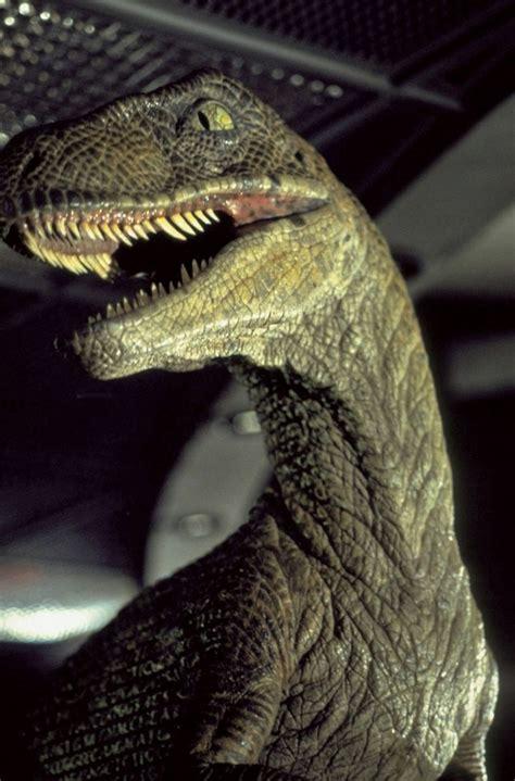 Fotos de Jurassic Park, imagenes de Jurassic Park