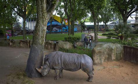 Fotos: El zoo de Barcelona, en imágenes | Sociedad | EL PAÍS
