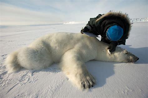 Fotos: Las consecuencias del cambio climático | Cinco Días ...