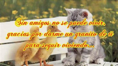 Frases Bonitas de Amistad   Feliz dia del Amor y la ...