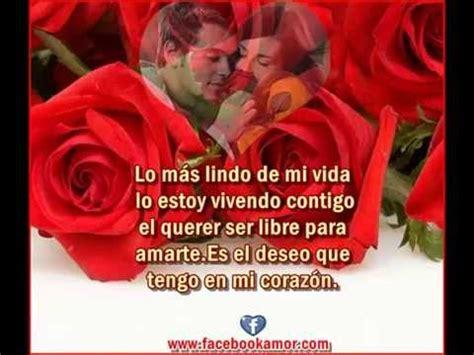 Frases con flores de rosas para el amor   YouTube