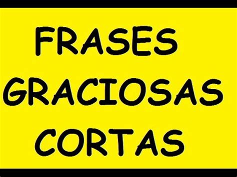 FRASES CORTAS GRACIOSAS   YouTube