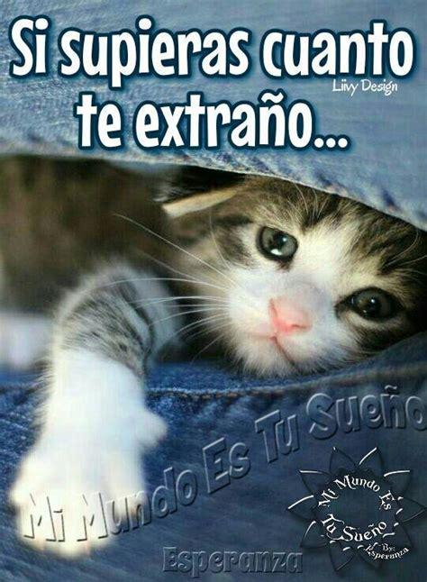 Frases De Te Extraño En Imagen De Tiernos Gatitos Para ...