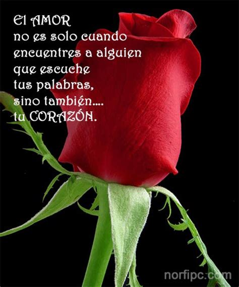 Frases del corazón para expresar amor y sentimientos en ...