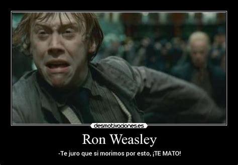 Frases y curiosidades de Harry Potter que te hacen llorar ...