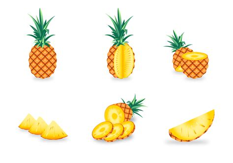 Free Ananas Vector   Download Free Vectors, Clipart ...