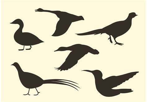 Free Bird Vector Silhouette Pack   Download Free Vectors ...