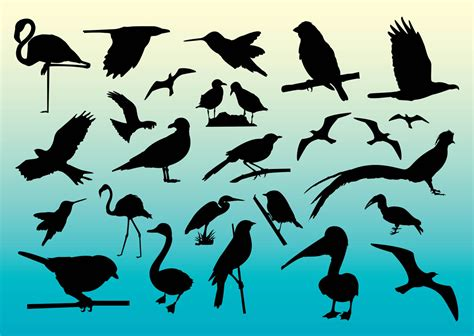 Free Birds Vector Silhouettes Vector Art & Graphics ...