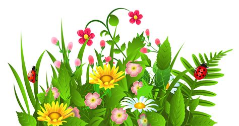 Free clip art graphics flowers free flower clipart cards ...