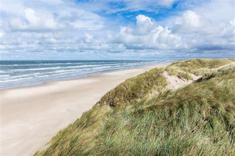 Free Images : beach, grass, sand, ocean, horizon, cloud ...