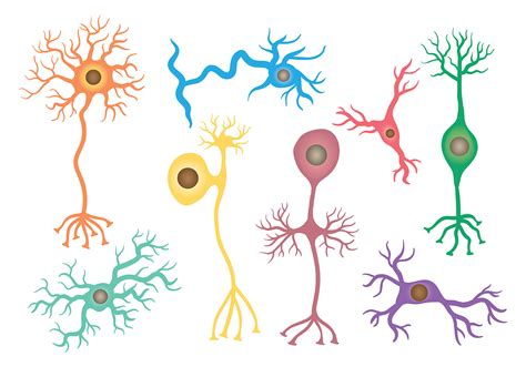 Free Neuron Icons Vector   Download Free Vectors, Clipart ...