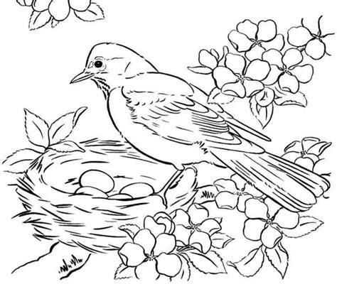 Free Printable Adult Coloring Pages Birds   Get Coloring Pages