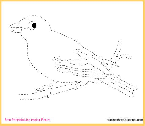 Free Tracing Line Printable: Canary Tracing Picture