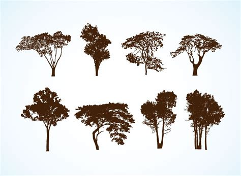 Free Vector Trees. these are actually free easy open in ...