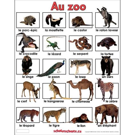 french+english+zoo+animals | Affichages , cahiers de ...