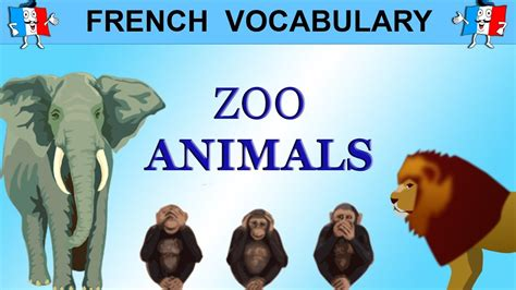 French Vocabulary   ZOO ANIMALS IN FRENCH   YouTube