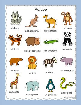 French Zoo Animals   Au Zoo   Puzzles pack   les animaux ...