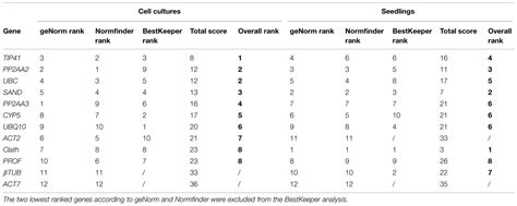 Frontiers | Selection and validation of reference genes ...