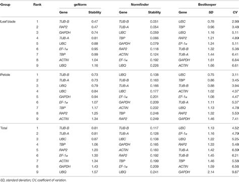 Frontiers | Validation and Comparison of Reference Genes ...