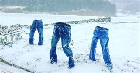 #FrozenPants: People freezing clothes, posing them amid ...