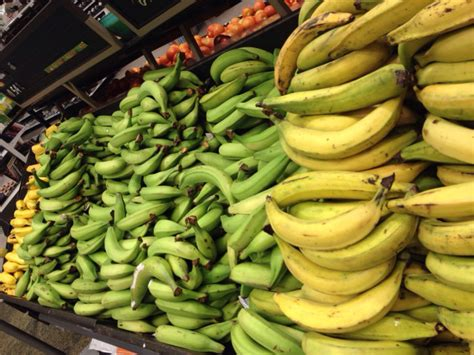 Fruits of Ecuador: 5 Types of Banana   The Russian Abroad