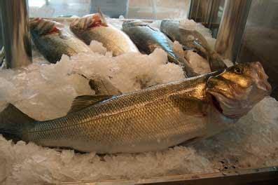 Frutos del Mar: Lubina del Mar Menor
