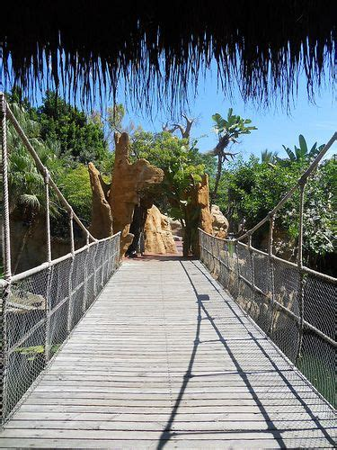 Fuengirola Zoo, Malaga, Spain   Andalusia spain, Malaga, Spain