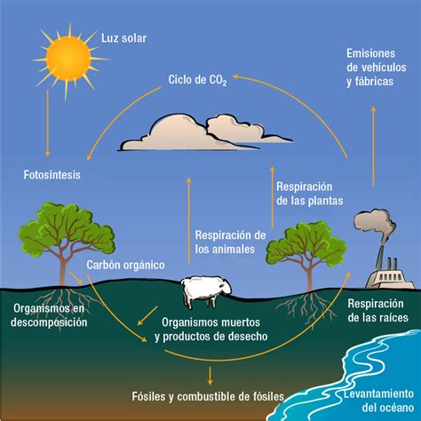 fuente de energia natural: FUENTES DE ENERGIA