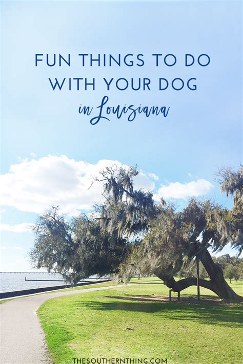 Fun Things to Do With Your Dog in Louisiana • The Southern ...