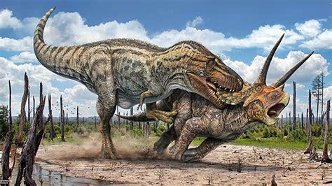 Fundacion Dinosaurios Cyl: 5 preguntas que seguro te haces ...