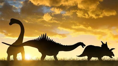 Fundacion Dinosaurios Cyl: Descubren espectaculares ...
