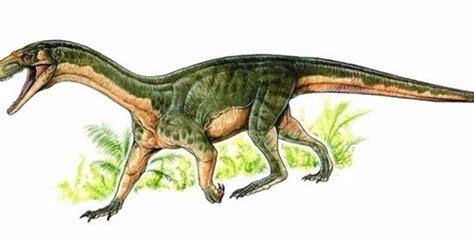 Fundacion Dinosaurios Cyl: La mayoría de ancestros de los ...