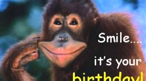 funny birthday quotes   YouTube