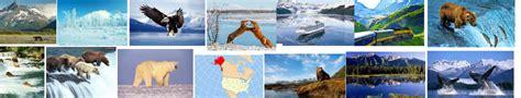 FUTBOL EN DIRECTO GRATIS :: ALASKA 6