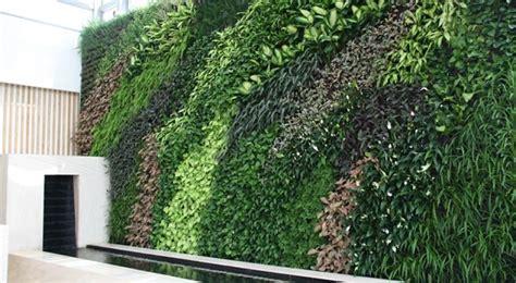 Galería de ideas para jardinería   Muro verde natural grande