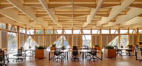 Galeria de Incubadora Universidade Macquarie / Architectus   3