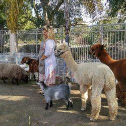 Garden of Eden Mobile Petting Zoo   71 Photos & 16 Reviews ...