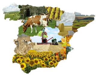 Geografía 2º de Bachillerato: Sector Primario