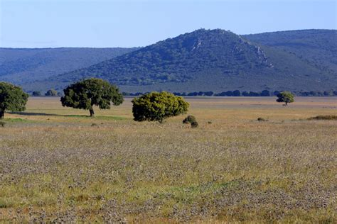 Geografía de España: Los grandes conjuntos naturales españoles