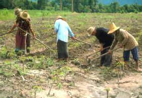 GEOMUNDO21: De la agricultura de subsistencia al ...