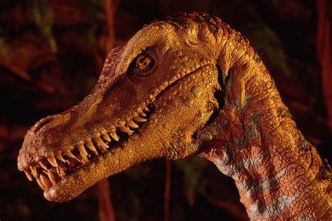 Get To Know 7 Disney Parks Dinosaurs | Disney Parks Blog