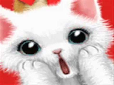GIFS ANIMADO GATINHO AMOR D+ GIFS ANIMATED KITTEN LOVE D ...