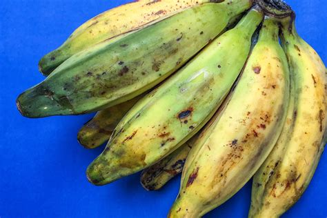 Go Bananas with These 12 Varieties Worth Seeking Out in ...