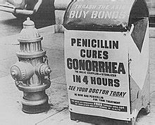 Gonorrhea   Wikipedia
