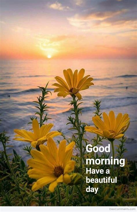 Good Morning – Have A Beautiful Day   DesiComments.com