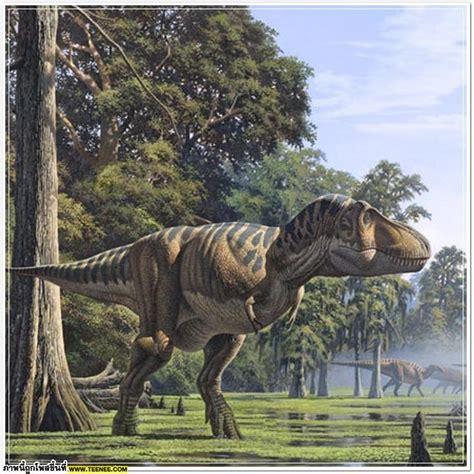 Gorgosaurus   Fotos, Hechos y Historia | Dinosaurios