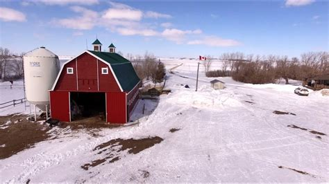 Grain Farming A Year Round Occupation   YouTube