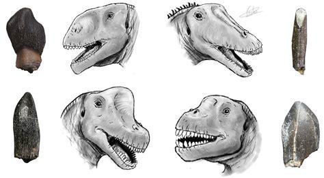 Gran diversidad de dinosaurios saurópodos en el Jurásico ...