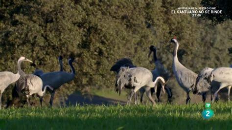 Grandes Documentales El despertar de la Naturaleza ...